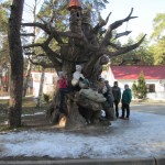 muzei kazachestva (11)